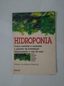 Hidroponia - Robson de barros Alberoni