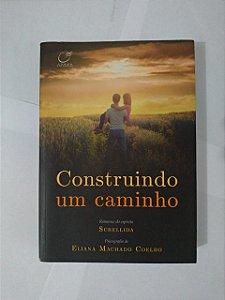 Construindo um Caminho - Eliana Machado Coelho