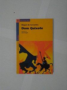 Dom Quixote - Miguel de Cervantes (Reencontro)
