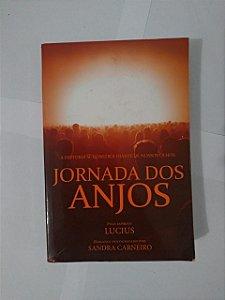 Jornada dos Anjos - Sandra Carneiro (Marcas de uso) - Romance Espírita