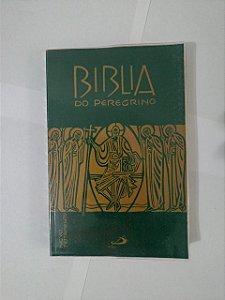 Bíblia do Peregrino - Novo Testamanto