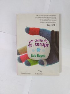 Por Causa do Sr. Terupt - Rob Buyea