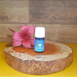 Noz Moscada – Óleo Essencial Orgânico – 5ml- Oshadhi