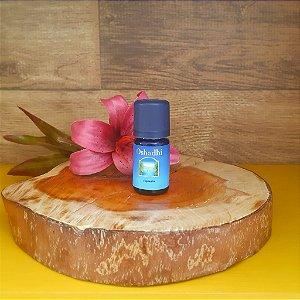 Cipreste – Óleo Essencial Orgânico – 5ml- Oshadhi