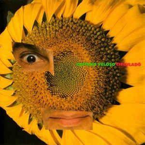 CD -  Caetano Veloso - Circuladô