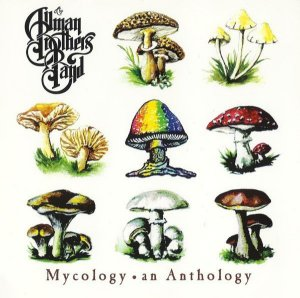 CD - The Allman Brothers Band - Mycology an Anthology - IMP