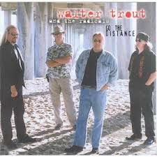 CD - Walter Trout And The Radicals - Go The Distance