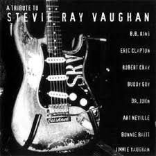 CD - Various ‎– A Tribute To Stevie Ray Vaughan Ray Vaughan