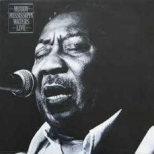 "CD - Muddy Waters - Muddy ""Mississippi"" Waters Live"