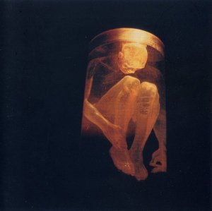 CD - Alice In Chains – Nothing Safe