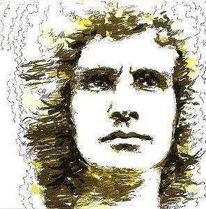 LP - Roberto Carlos 1971 (Detalhes)