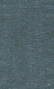 Tecido Chenille Viscose Azul Liso - RUS 40