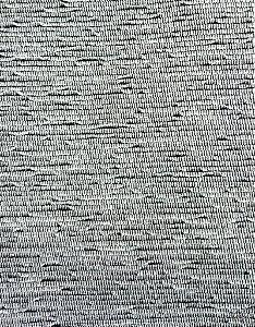 Tecido para sofa chenille Liso Cinza Escuro - Tur 40