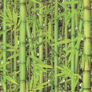 Papel de parede Fotos Bambuzal Replik J780-04