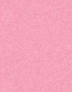 Papel de parede Nido Infantil 8710-4 Liso Pink Claro