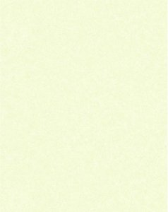 Papel de parede Nido Infantil 8710-6 Liso Verde Claro