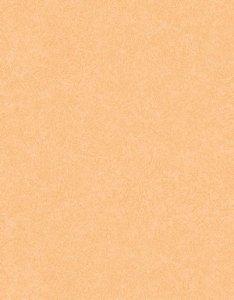 Papel de parede Nido Infantil 8710-8 Liso Laranja