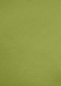 Tecido Corano Verde Pistache 9182