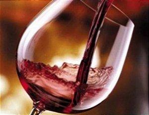 Vinho Almadén Cabernet Sauvignon 250ml -  Catelândia
