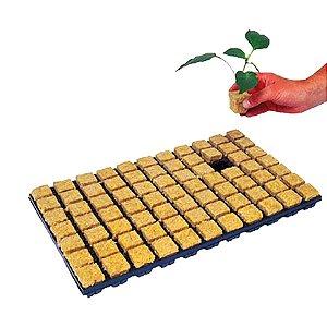 Bandeja Germinação Cultilene Stone Wool Tray 3,5x3,5x4cm (6 células)
