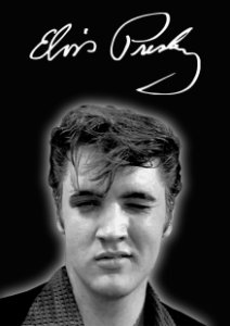 Quadro Decorativo Elvis - MS0007