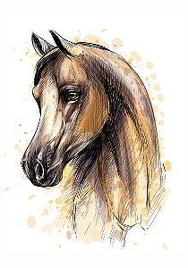 C084 | Cavalo
