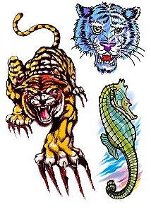 C009 Tigres e Cavalo Marinho