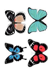 C047borboletas