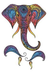 C074 elefante