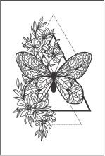 Tatuagem Borboleta PB| VR04