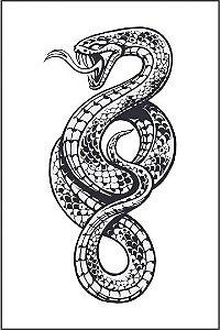Tatuagem Cobra | PB| VR012