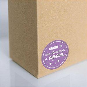 Adesivo para embalagem (250 unidades)