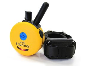 Mini Educator ET300