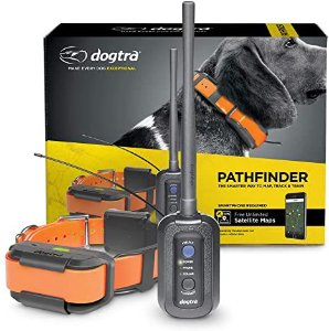 Dogtra Pathfinder GPS
