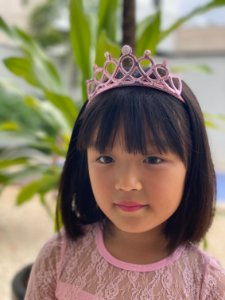 Tiara de cabelo princesa pérola