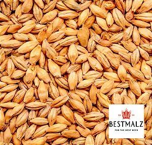 Malte Best Malz - Chit Malt