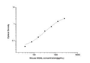 Mouse NGAL(Neutrophil Gelatinase Associated Lipocalin) ELISA Kit