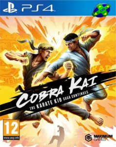 Cobra Kai The Karate Kid Saga Continues - PS4