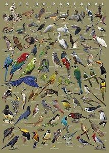 Poster Aves do Pantanal