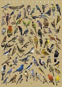 Poster Aves do Cerrado