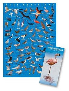 COMBO: Poster + Guia de Aves Costeiras