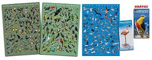 COMBO: 3 Poster = 1 Atlântica Vol. I + 1 Atlântica Vol. II + 1 Aves Costeiras + Guia Costeiras + Guia Foz GRÁTIS!!!
