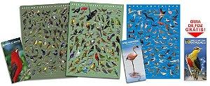 COMBO: 2 Posters Floresta Atlântica 1 e 2 + Poster Aves Costeiras + 2 Guias de Aves + GUIA DE FOZ GRÁTIS