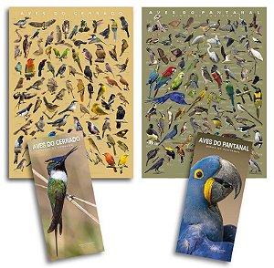 COMBO: 2 Posters + 2 GUIAS CERRADO e PANTANAL