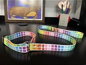 Guia para Cachorro Satin Control Rainbow LuckyPet