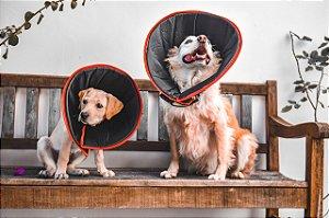 Colar Cirúrgico para Cachorro  LuckyPet