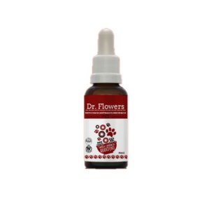 Floral Pet Carência e Síndrome do Abandono 31 ML