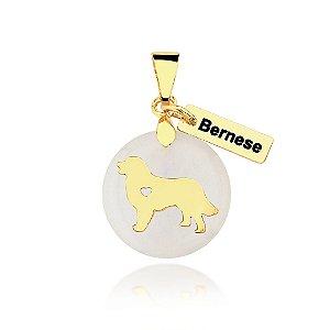 Pingente madrepérola raça Bernese folheado em ouro 18k