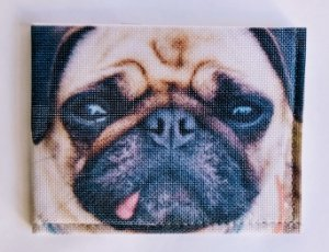 Carteiras Fun - Dog