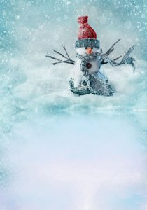 Fundo Fotografico Boneco de Neve 03 (1,50 x 2,10 metros)